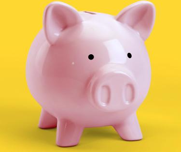 Next Home Piggy Bank